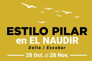 banners-ep-pilar-hoy299x200